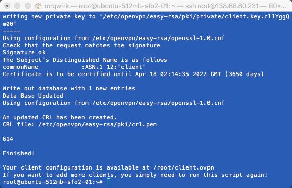 OpenVPN setup complete